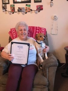 Therapy Dog Training for Cindy Image
